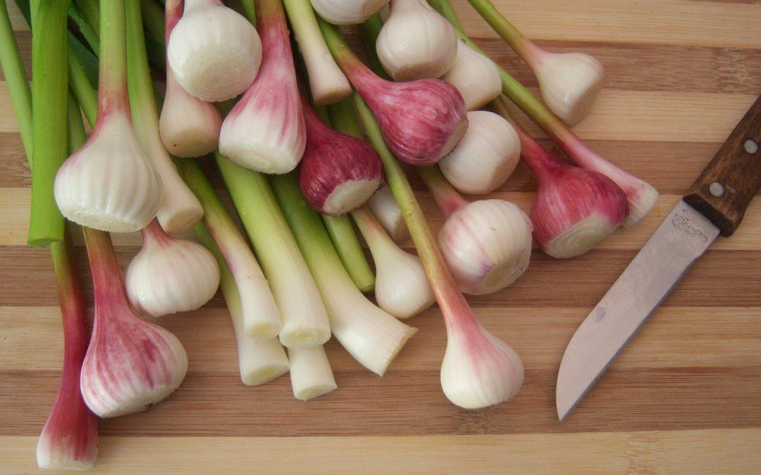Ajos tiernos, un clásico de la primavera para aromatizar platos